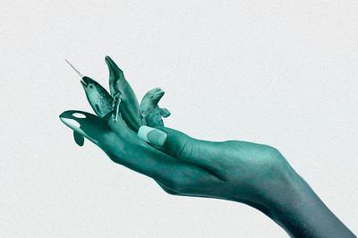 Sedna's Reach