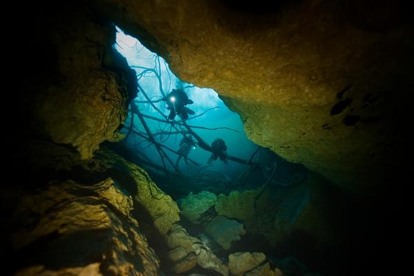 A team of divers enters descends through Orange Grove Sink in Florida. Photo: Jill Heinerth