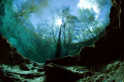 Peering out from inside the Main Spring at Ginnie Springs, High Springs, Florida, photographer Jill Heinerth has captured the vision that only cave divers see from inside the planet.
